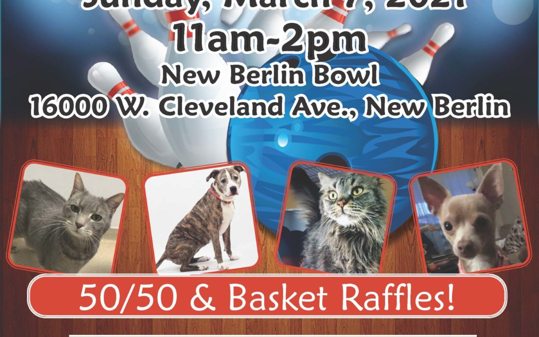Pins for Paws Bowl-A-Thon: Team of 4 +$80