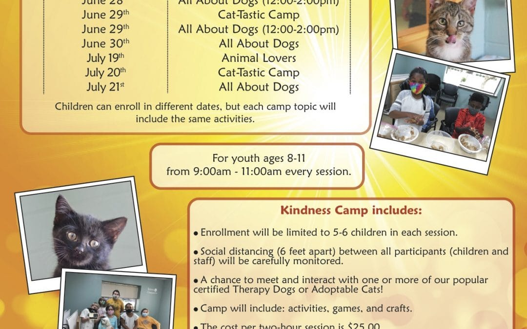 Summer Kindness Camp: All About Dogs